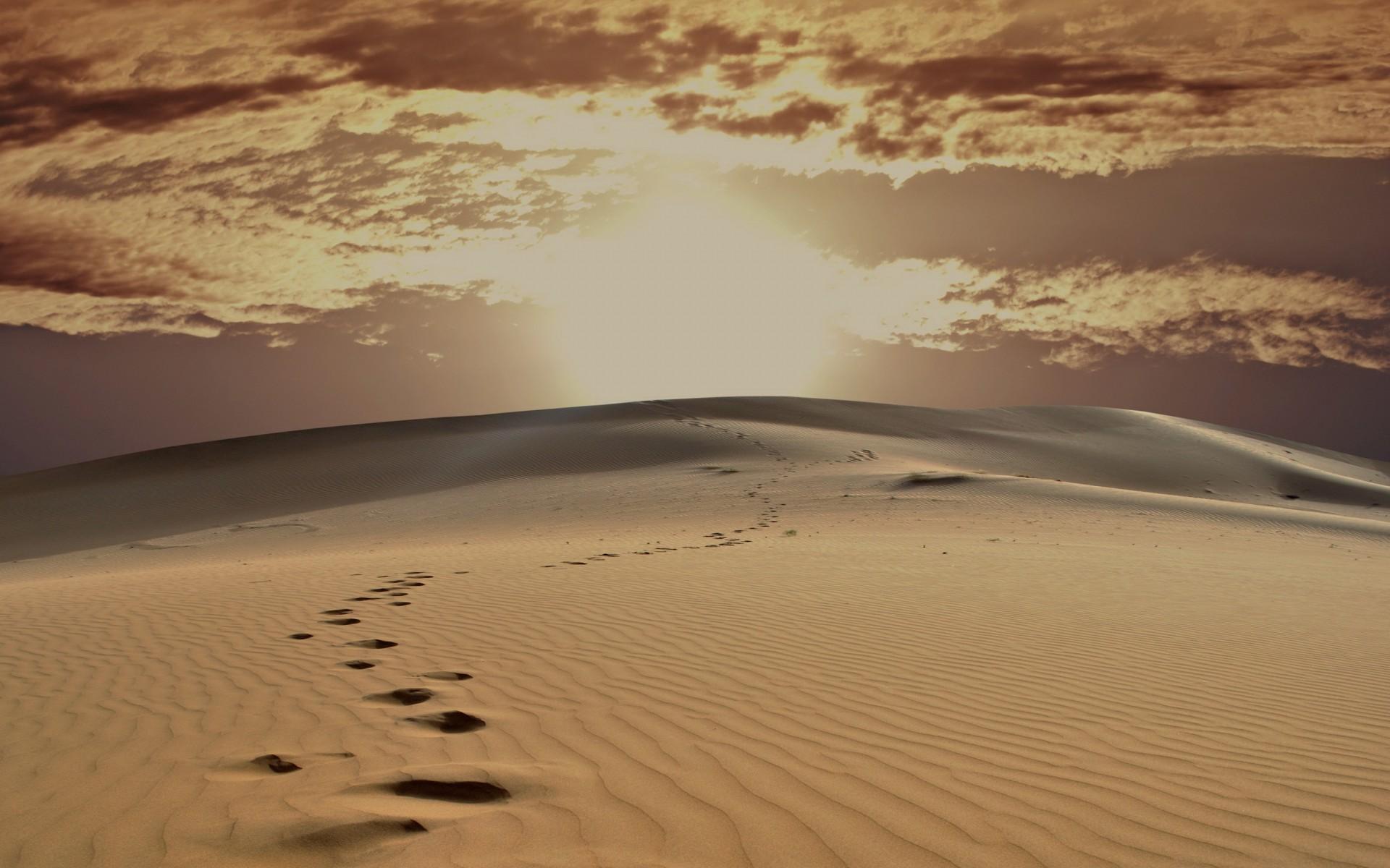 DesertOfJaisalmer
